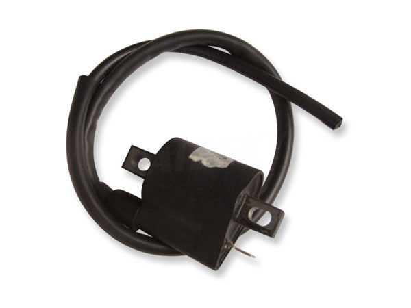 ZJ125 Ignition Coil